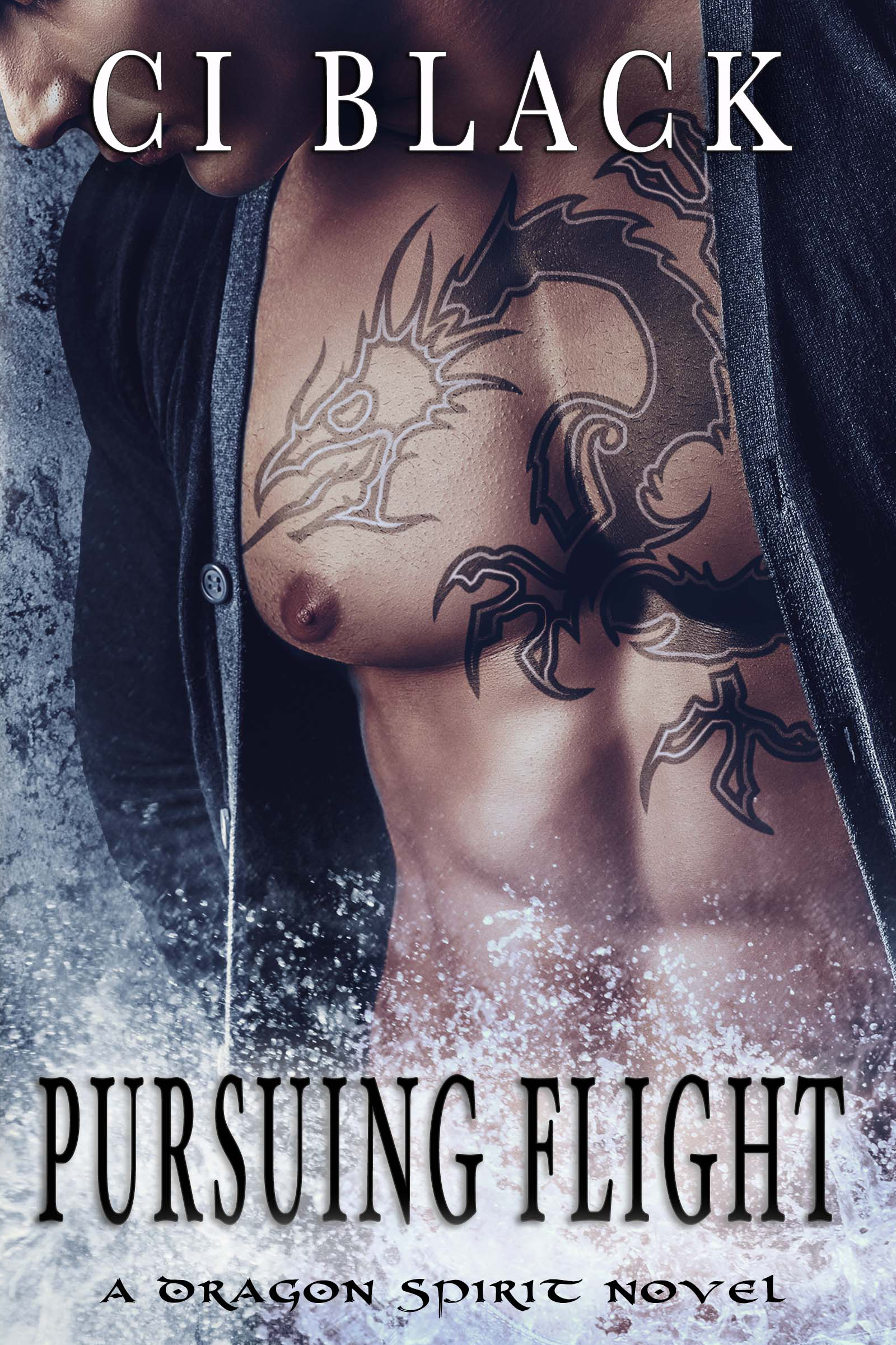 Pursuing Flight, an urban fantasy / paranormal romance and the fourth book in the Dragon Spirit series by C.I. Black